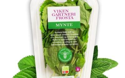 Prøv våre nye, miljøvennlige krydderurtepakninger!